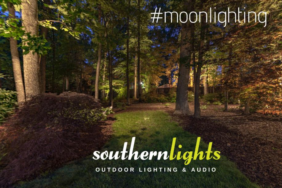 Moonlighting Helps Make Your Landscape Lighting Look More